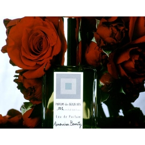 American Beauty (Rose no.1) by Dawn Spencer Hurwitz