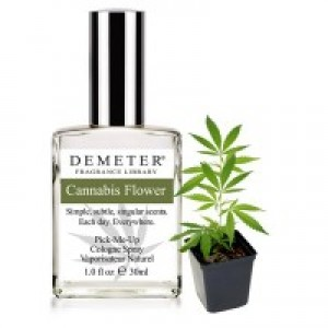 Cannabis Flower by Demeter Fragrance Library
